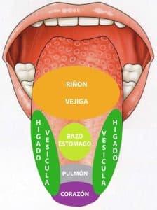 lengua-omonovo