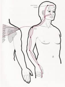 canal tendinomuscular de intestino grueso